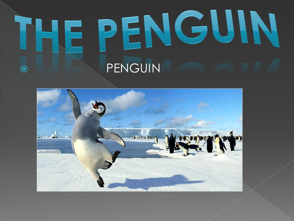  Thank you for watching my power point and I hope you enjoyed it!(: To learn about more about penguins, go to : http://www.defenders.org/wildlife_and_habit at/wildlife/penguin.php?lb_v=7
