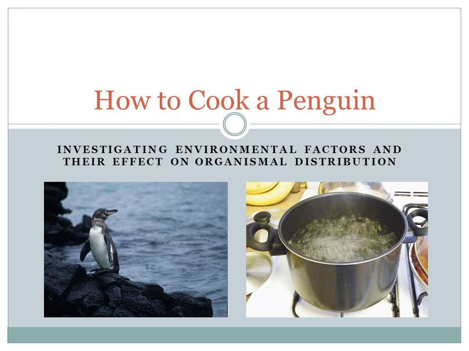 INVESTIGATING ENVIRONMENTAL FACTORS AND THEIR EFFECT ON ORGANISMAL DISTRIBUTION How to Cook a Penguin