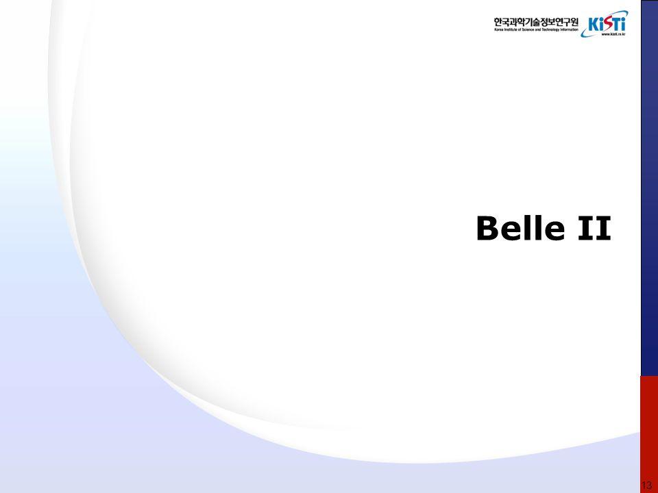 Belle II 13