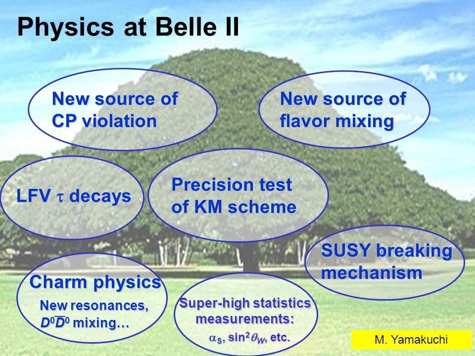 Physics at Belle II New source of CP violation New source of flavor mixing LFV  decays SUSY breaking mechanism Precision test of KM scheme Super-high