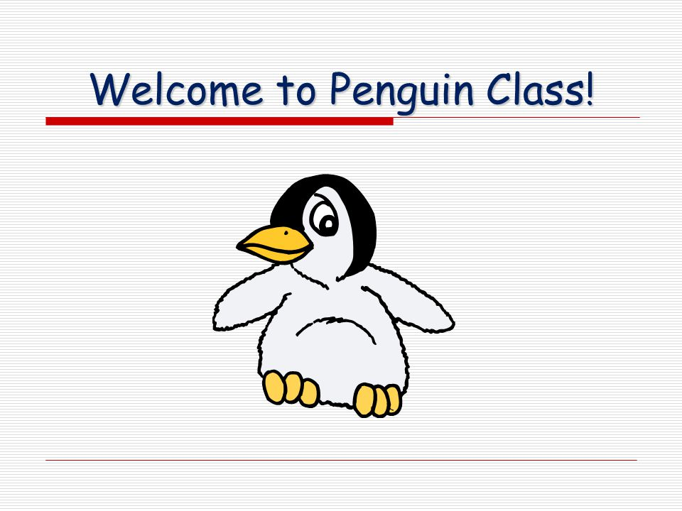 Welcome to Penguin Class!