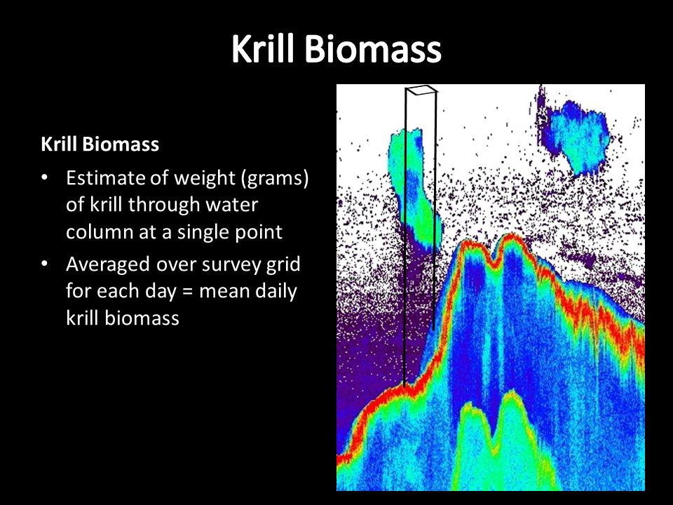 Krill Biomass Estimate of weight (grams) of krill through water column at a single point Averaged over survey grid for each day = mean daily krill biomass