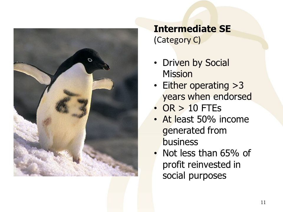 11 Intermediate SE (Category C) Driven by Social Mission Either operating >3 years when endorsed OR > 10 FTEs At least 50% income generated from business Not less than 65% of profit reinvested in social purposes