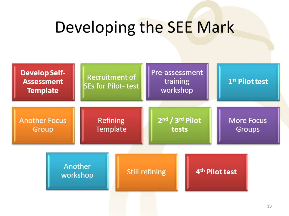 Developing the SEE Mark Develop Self- Assessment Template Recruitment of SEs for Pilot- test Pre-assessment training workshop 1 st Pilot test Another