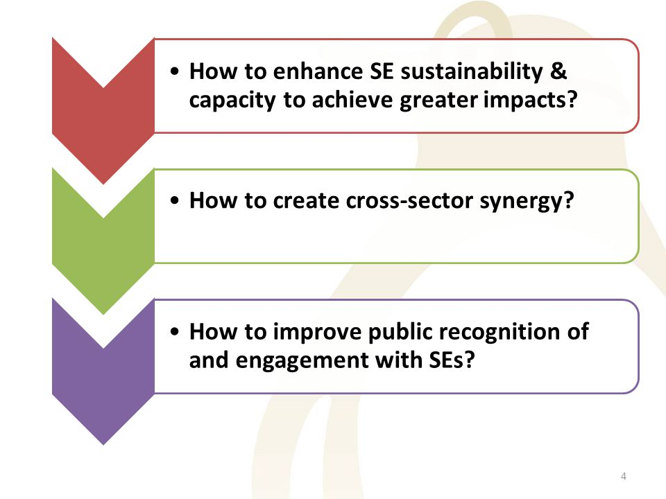 How to enhance SE sustainability & capacity to achieve greater impacts.