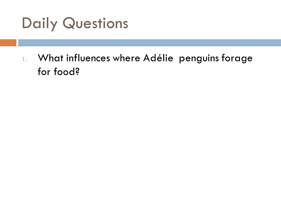 Daily Questions 1. What influences where Adélie penguins forage for food