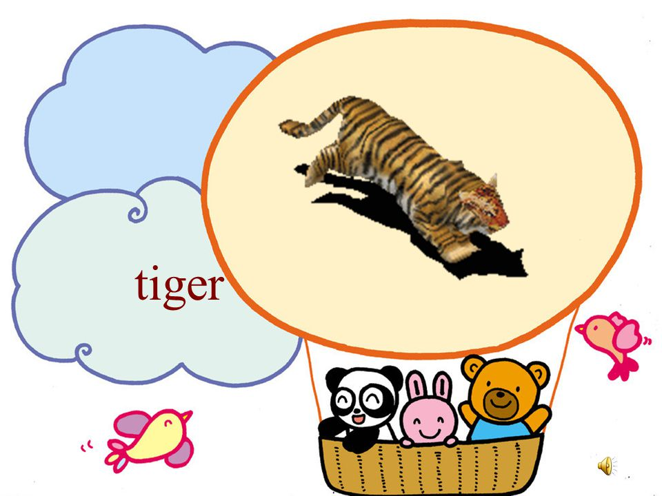 Unit 4 Animals Lesson 8 松溪实验小学 : 林丽飞