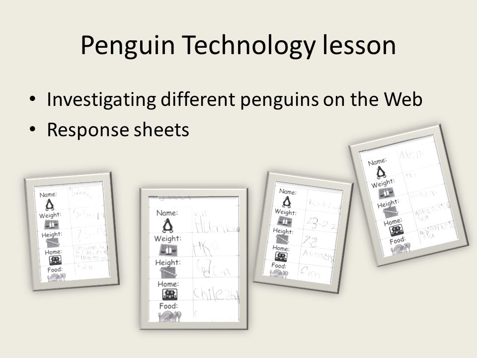 Penguin Technology lesson Investigating different penguins on the Web Response sheets
