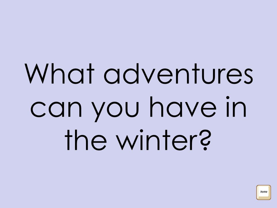 What adventures can you have in the winter?