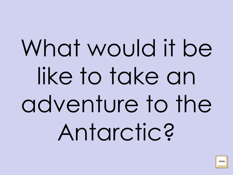 What would it be like to take an adventure to the Antarctic?