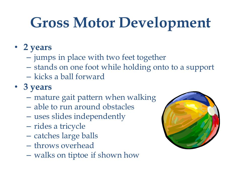 Gross Motor Development 2 years – jumps in place with two feet together – stands on one foot while holding onto to a support – kicks a ball forward 3 years – mature gait pattern when walking – able to run around obstacles – uses slides independently – rides a tricycle – catches large balls – throws overhead – walks on tiptoe if shown how