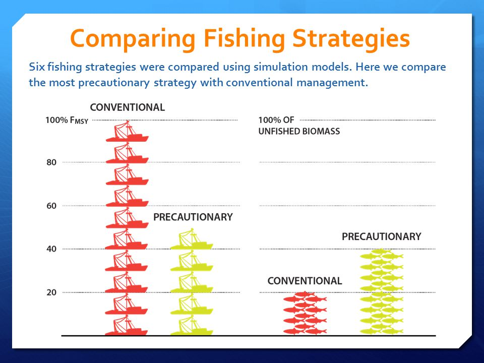 Comparing Fishing Strategies Six fishing strategies were compared using simulation models. Here we compare the most precautionary strategy with conven
