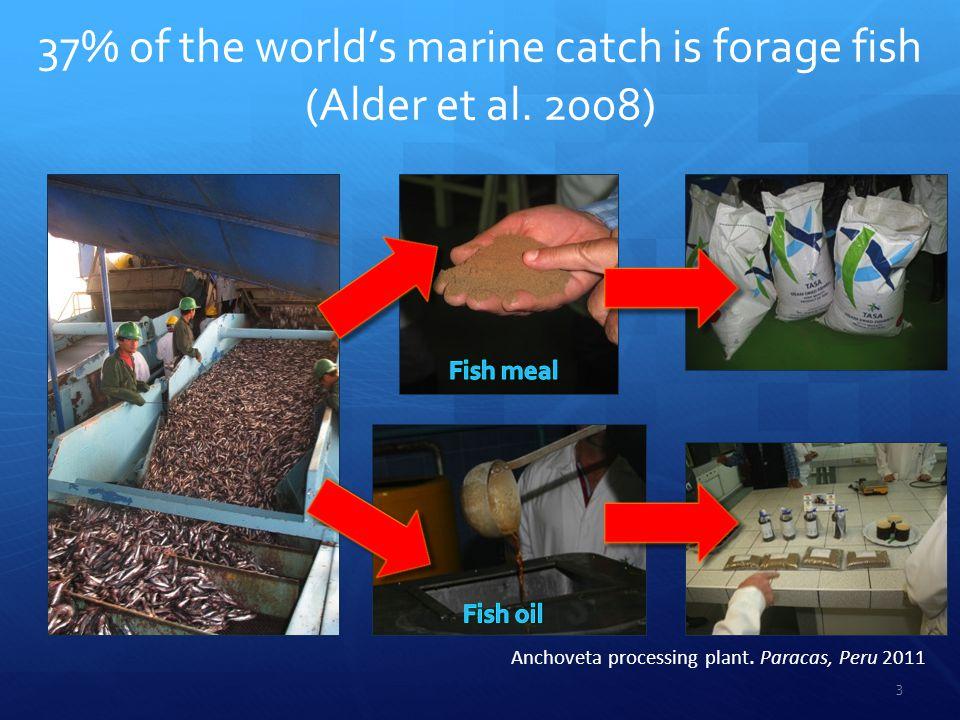 Comparing Fishing Strategies Six fishing strategies were compared using simulation models.