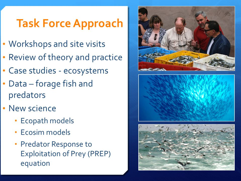 Task Force Approach Workshops and site visits Review of theory and practice Case studies - ecosystems Data – forage fish and predators New science Eco