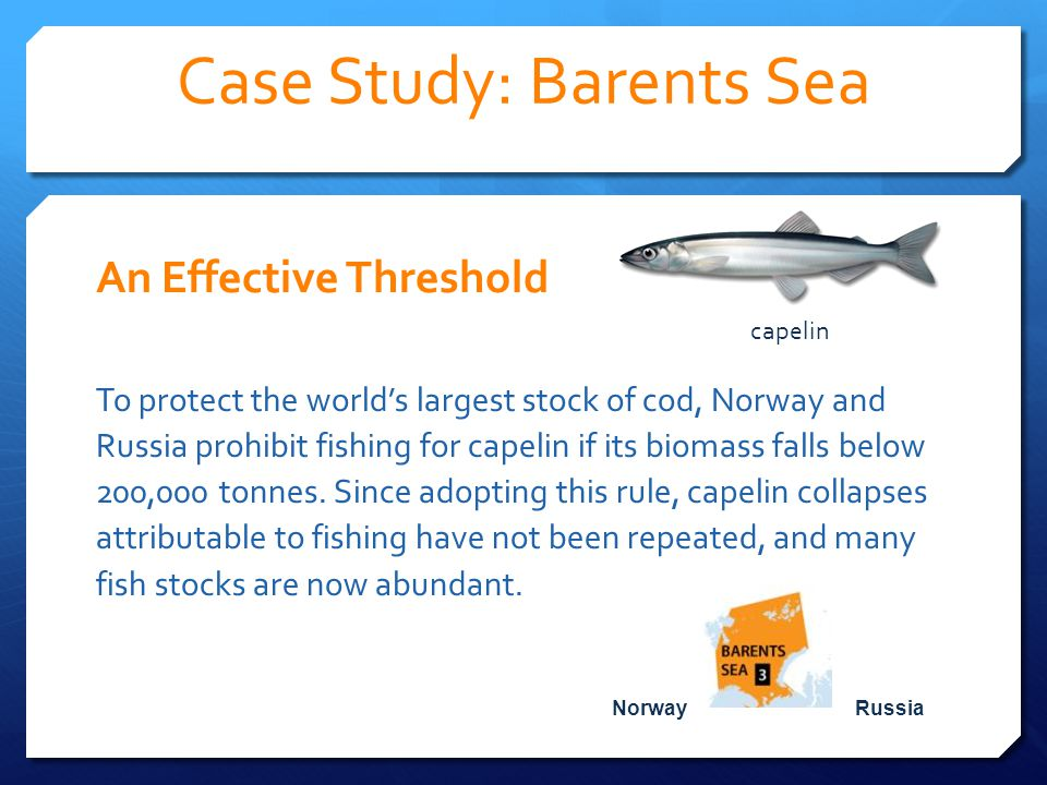 Case Study: Barents Sea An Effective Threshold To protect the world's largest stock of cod, Norway and Russia prohibit fishing for capelin if its biomass falls below 200,000 tonnes.