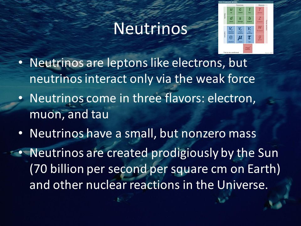 Neutrinos Neutrinos are leptons like electrons, but neutrinos interact only via the weak force Neutrinos come in three flavors: electron, muon, and tau Neutrinos have a small, but nonzero mass Neutrinos are created prodigiously by the Sun (70 billion per second per square cm on Earth) and other nuclear reactions in the Universe.