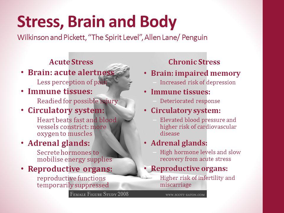 "Stress, Brain and Body Wilkinson and Pickett, ""The Spirit Level"", Allen Lane/ Penguin Acute Stress Brain: acute alertness – Less perception of pain Im"