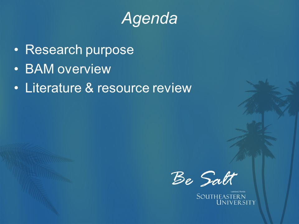 Agenda Research purpose BAM overview Literature & resource review
