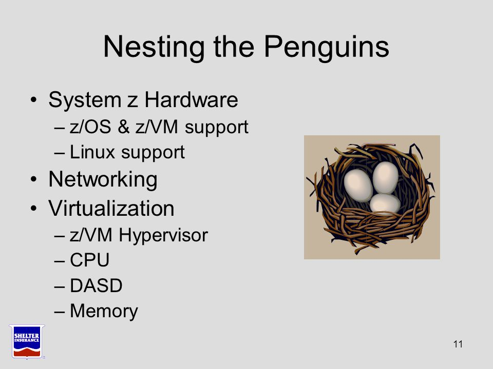 11 Nesting the Penguins System z Hardware –z/OS & z/VM support –Linux support Networking Virtualization –z/VM Hypervisor –CPU –DASD –Memory