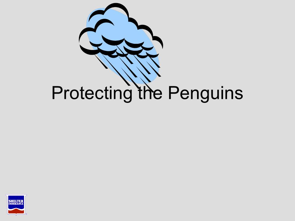 Protecting the Penguins