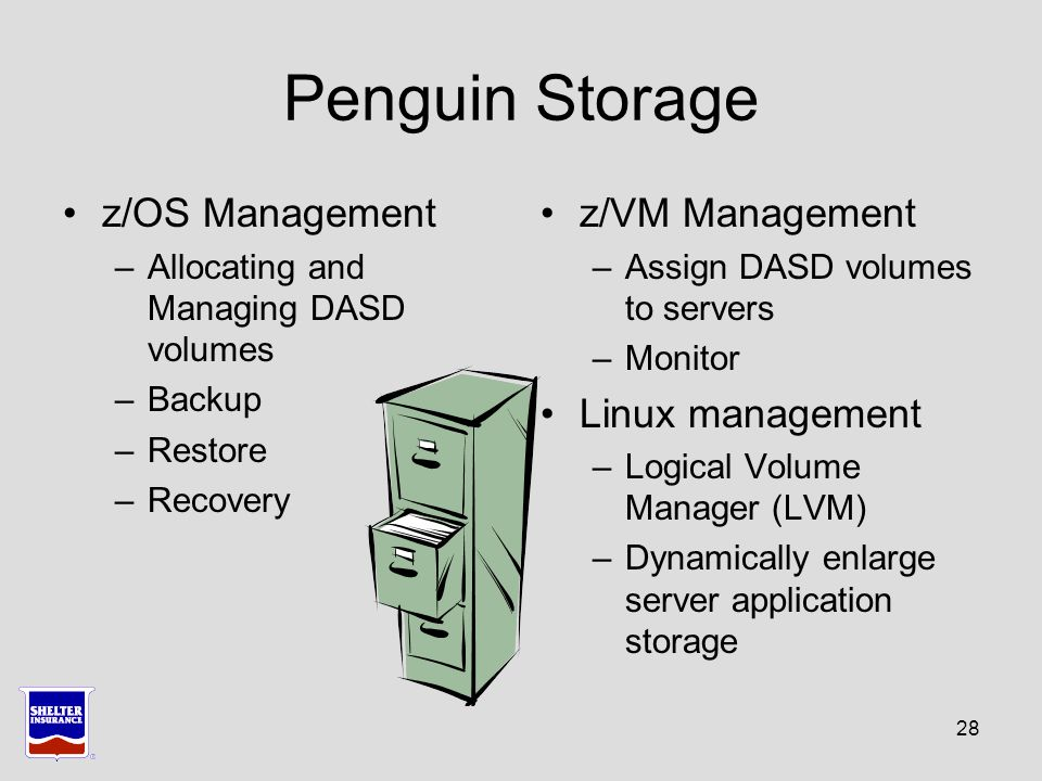 28 Penguin Storage z/OS Management –Allocating and Managing DASD volumes –Backup –Restore –Recovery z/VM Management –Assign DASD volumes to servers –Monitor Linux management –Logical Volume Manager (LVM) –Dynamically enlarge server application storage