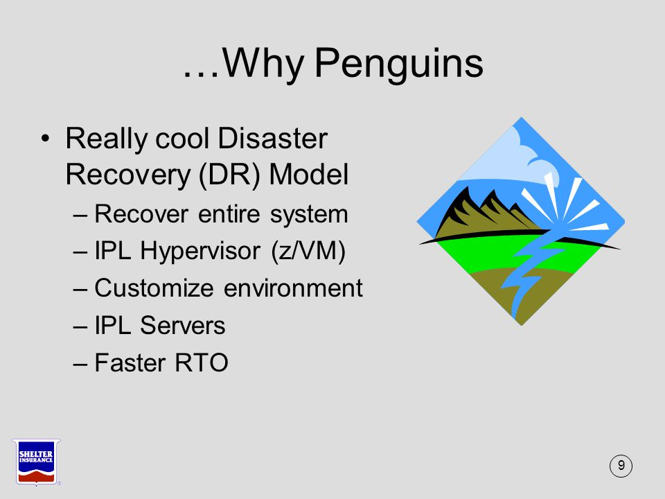 40 Hatching new Penguins More workload moving to Linux on z –WAS New applications Move from Intel –IBM recommendations – other stuff Best Fit Good Fit