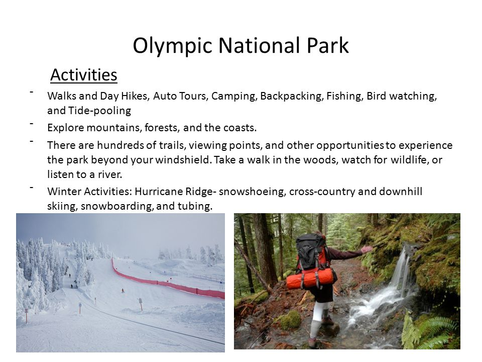 Olympic National Park Activities ˉWalks and Day Hikes, Auto Tours, Camping, Backpacking, Fishing, Bird watching, and Tide-pooling ˉExplore mountains, forests, and the coasts.