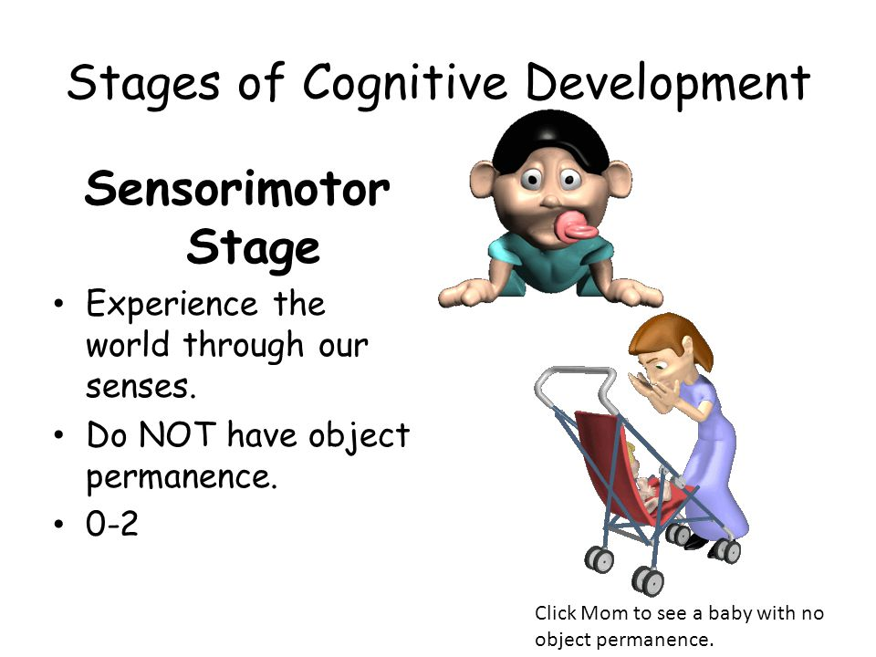Stages of Cognitive Development Sensorimotor Stage Experience the world through our senses. Do NOT have object permanence. 0-2 Click Mom to see a baby