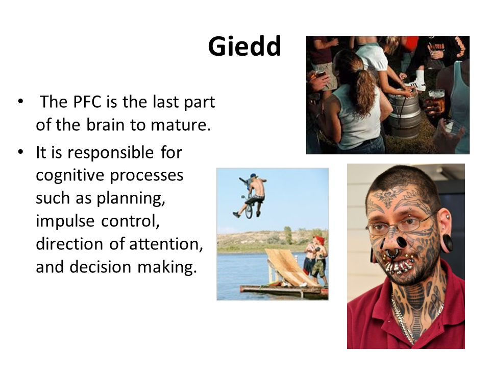 Giedd The PFC is the last part of the brain to mature. It is responsible for cognitive processes such as planning, impulse control, direction of atten