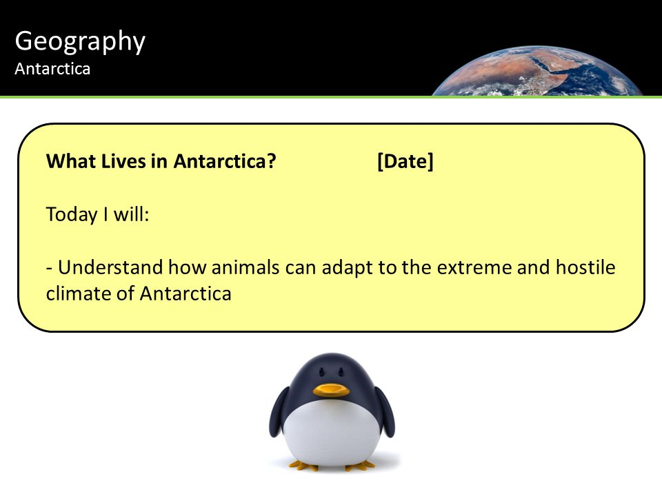 Geography Antarctica Th Journey to the South Pole What Lives in Antarctica [Date] Today I will: - Understand how animals can adapt to the extreme and hostile climate of Antarctica