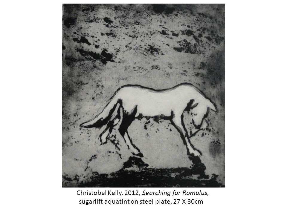 Christobel Kelly, 2012, Searching for Romulus, sugarlift aquatint on steel plate, 27 X 30cm