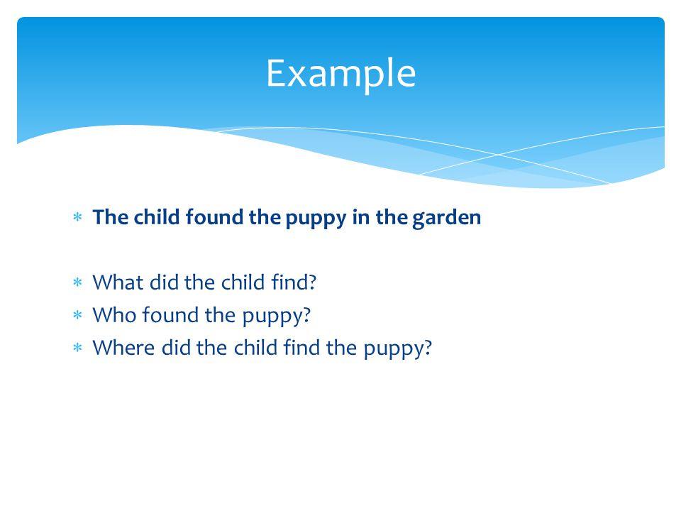  The child found the puppy in the garden  What did the child find?  Who found the puppy?  Where did the child find the puppy? Example