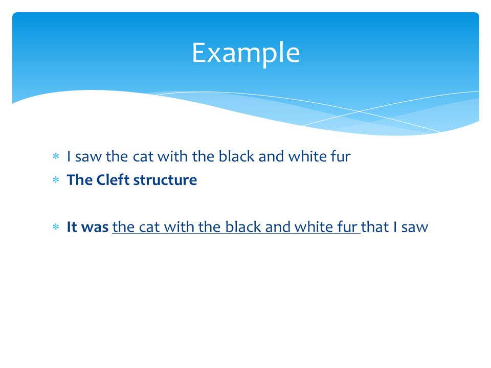 I saw the cat with the black and white fur  The Cleft structure  It was the cat with the black and white fur that I saw Example