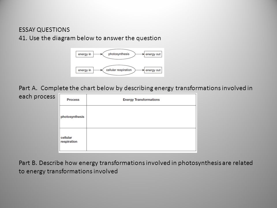 ESSAY QUESTIONS 41. Use the diagram below to answer the question Part A. Complete the chart below by describing energy transformations involved in eac