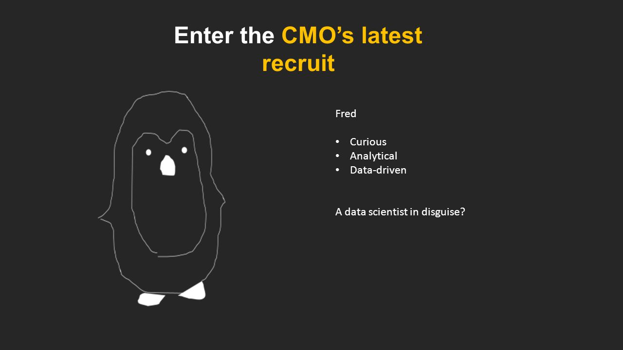 Enter the CMO's latest recruit Fred Curious Analytical Data-driven A data scientist in disguise