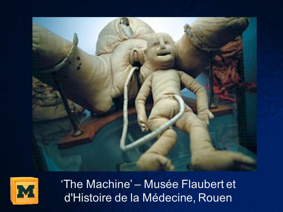 'The Machine' – Musée Flaubert et d Histoire de la Médecine, Rouen