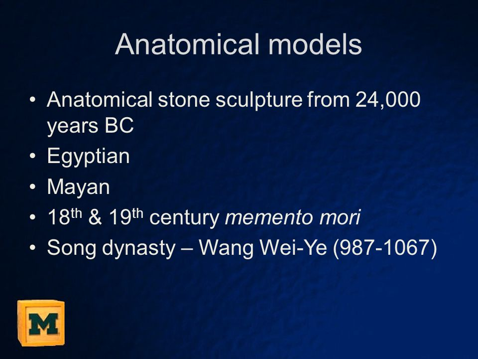 Anatomical models Anatomical stone sculpture from 24,000 years BC Egyptian Mayan 18 th & 19 th century memento mori Song dynasty – Wang Wei-Ye (987-10