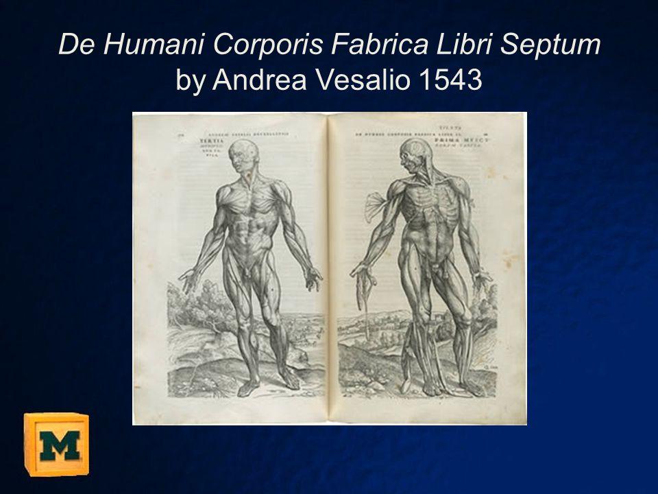 De Humani Corporis Fabrica Libri Septum by Andrea Vesalio 1543