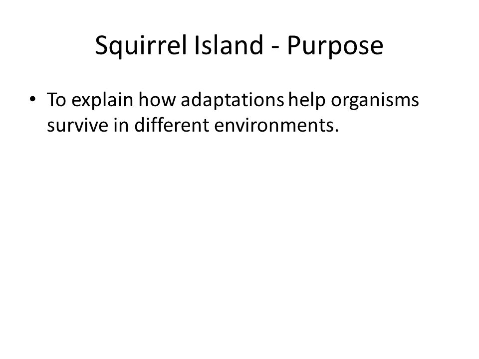 Squirrel Island - Purpose To explain how adaptations help organisms survive in different environments.