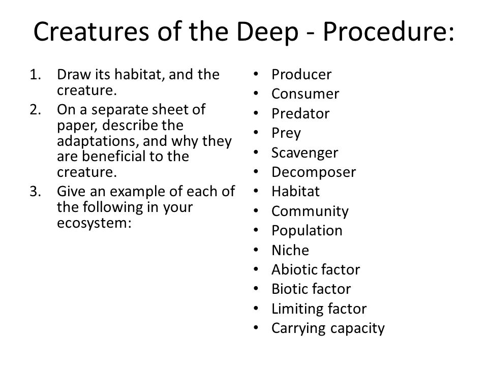Creatures of the Deep - Procedure: 1.Draw its habitat, and the creature. 2.On a separate sheet of paper, describe the adaptations, and why they are be