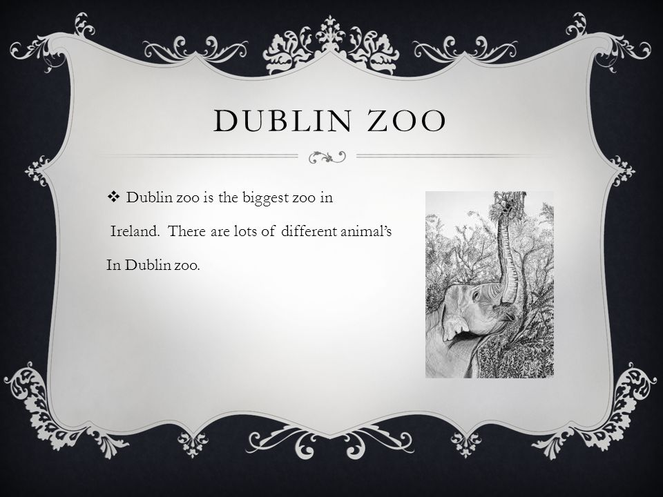 DUBLIN ZOO  Dublin zoo is the biggest zoo in Ireland. There are lots of different animal's In Dublin zoo.