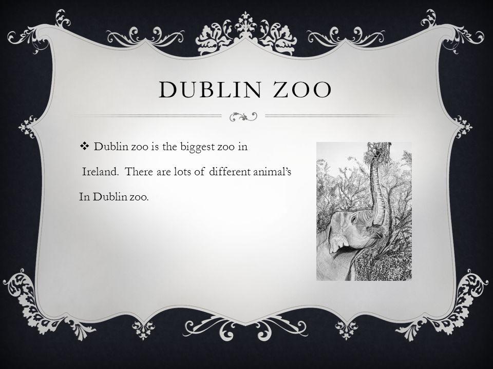 DUBLIN ZOO  Dublin zoo is the biggest zoo in Ireland.