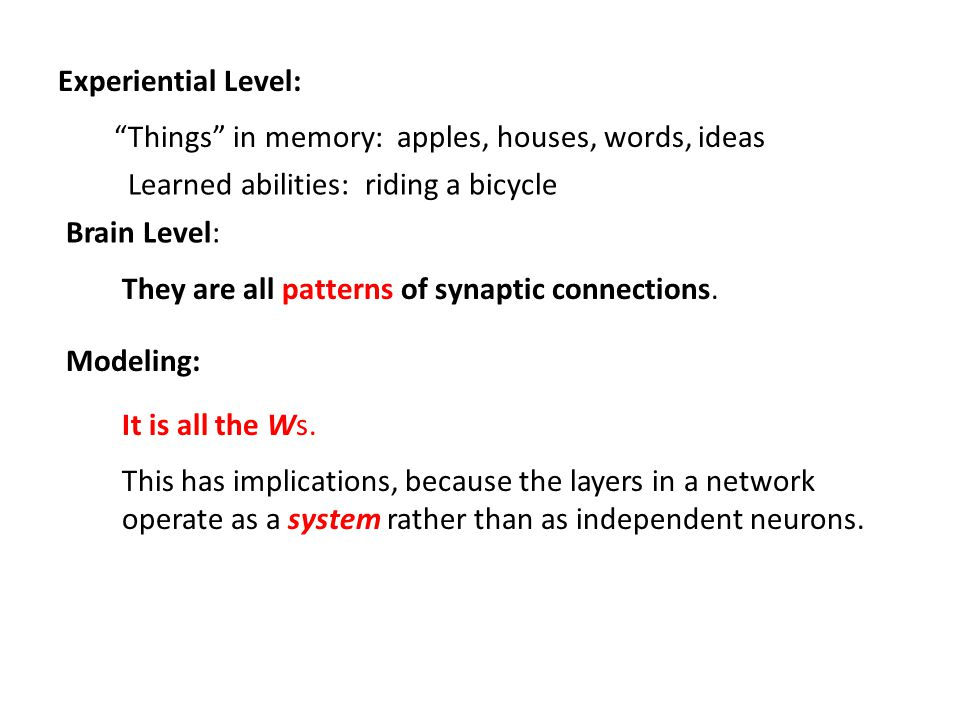 Experiential Level: Things in memory: apples, houses, words, ideas Brain Level: They are all patterns of synaptic connections.