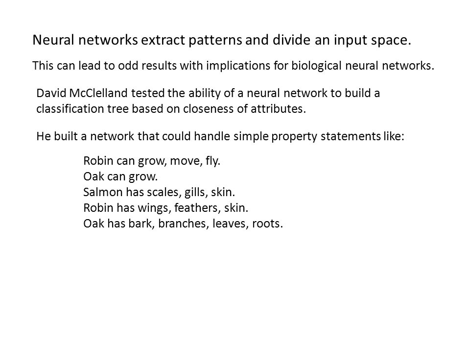 Neural networks extract patterns and divide an input space. This can lead to odd results with implications for biological neural networks. David McCle