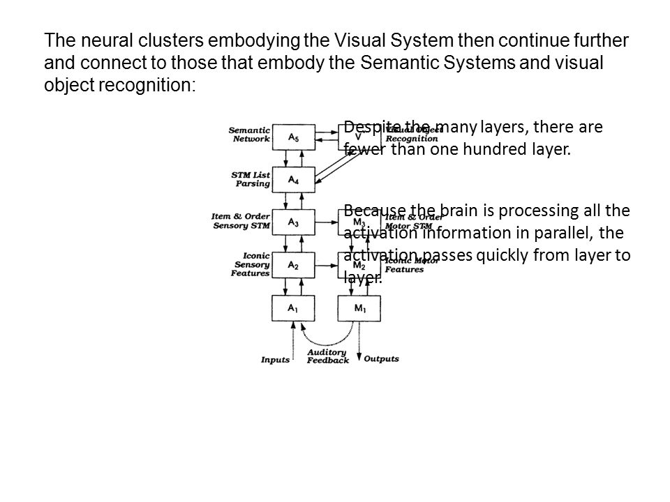 Neural Network software turns this sort of design into a computer program to simulate the network: