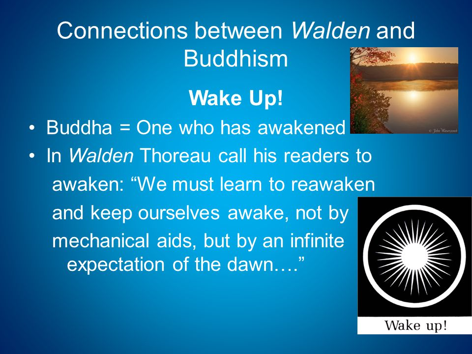 Connections between Walden and Buddhism Wake Up.