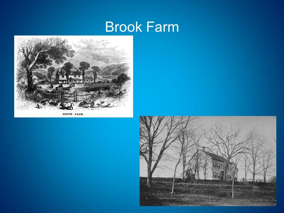 Site of Thoreau's Bean Field