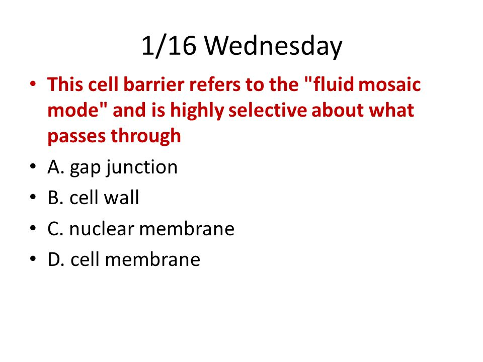 1/16 Wednesday This cell barrier refers to the fluid mosaic mode and is highly selective about what passes through A.