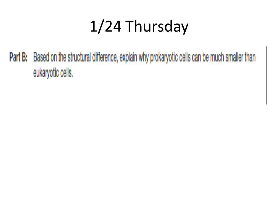 1/24 Thursday