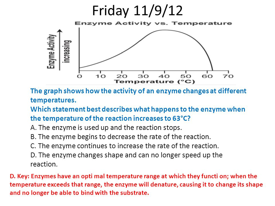 Friday 11/9/12 The graph shows how the activity of an enzyme changes at different temperatures.